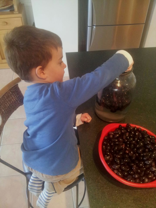 Jack helps me to pack freshly picked olives into jars