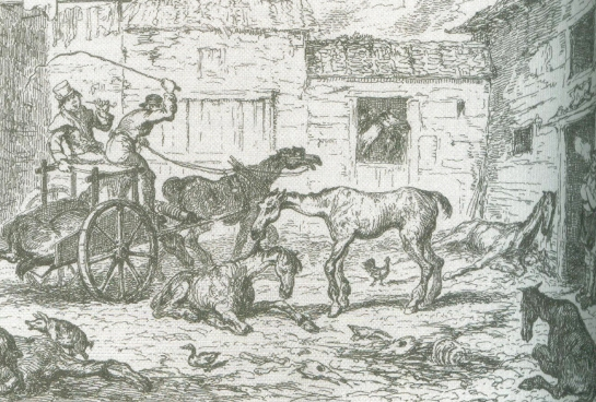 George Cruikshank's The Horse's Last Home from 'The Italian Boy' by Sarah Wise