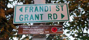 Frandi St 1